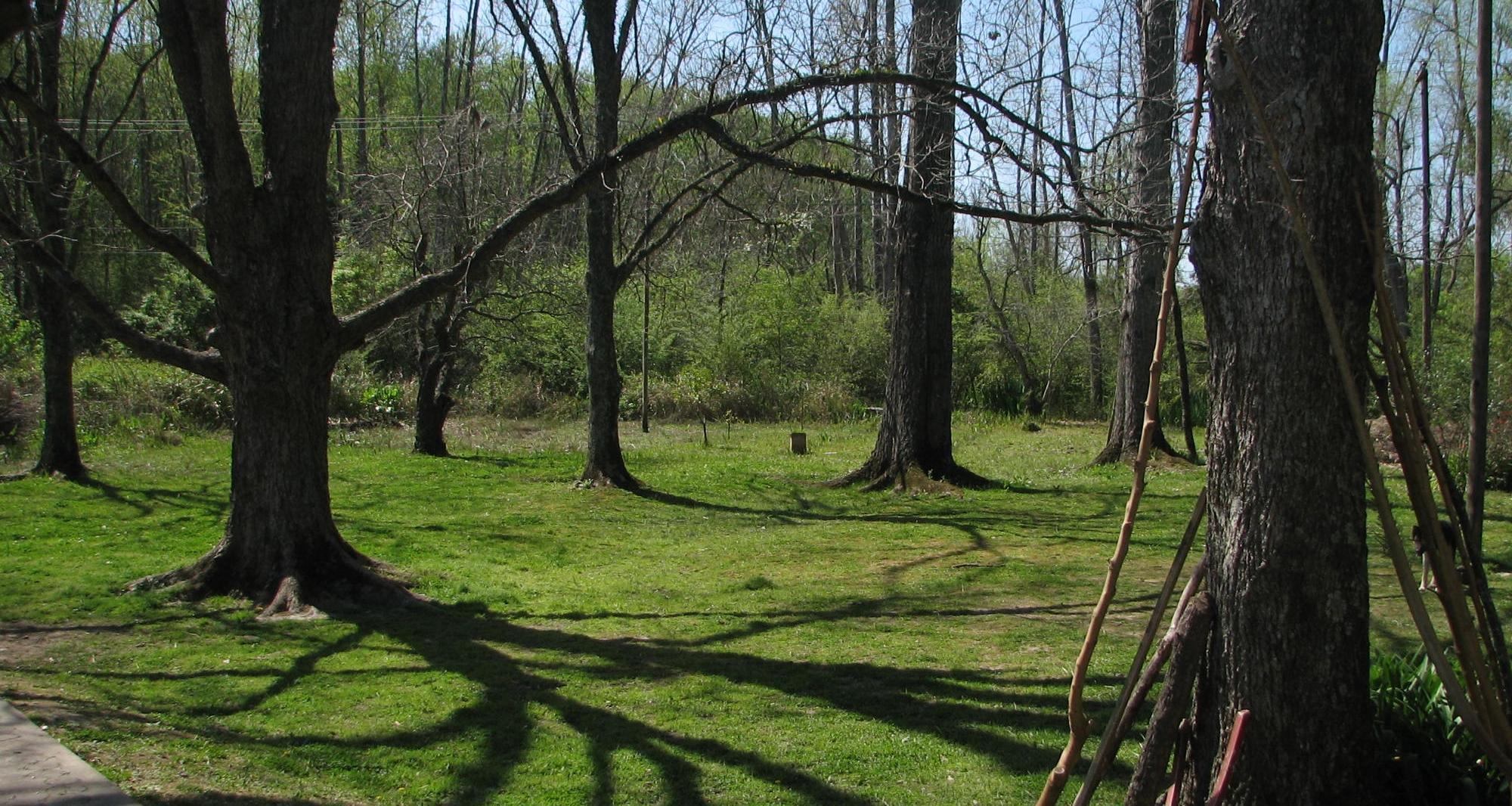 jardin de casona del rio, parque en el delta del tigre